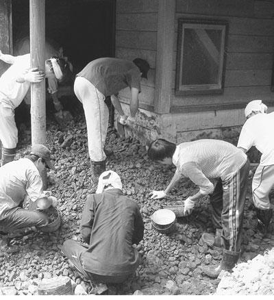 被災地で、石を取り除く学生や教職員=1日、福井市一乗寺