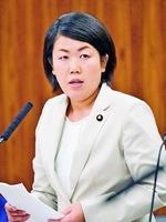 (写真)質問する岩渕友議員=10月20日、参院経産委